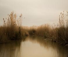 Serie Landschap, Veduta II,80x67, 2019